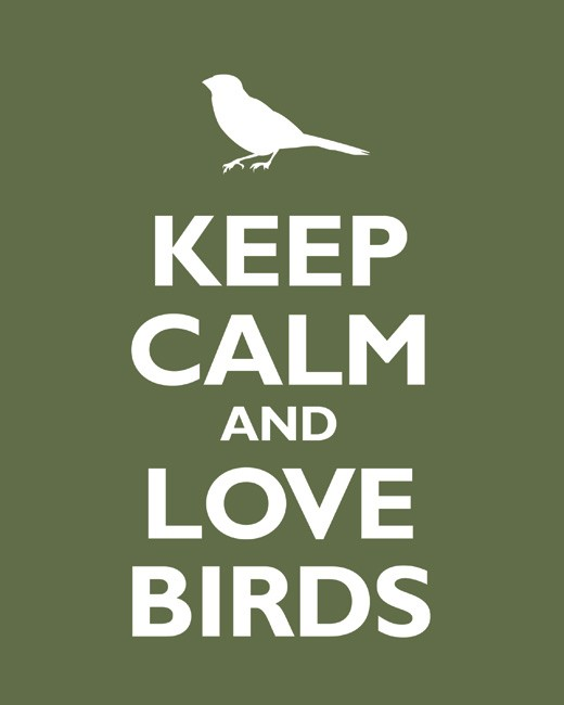 love-birds-olive